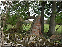 SP2504 : Remains of an old hut by andrew auger