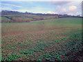 SO9338 : Cropland north of Westmancote by Trevor Rickard