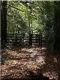SX5857 : Gate, Smuggler's Coppice by Derek Harper