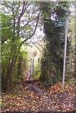 TQ4660 : Footpath on Washneys Road by David Anstiss