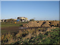 TL4499 : Beet pile by Creek Road by Hugh Venables