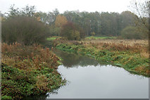 SP3365 : River Leam on a misty day, Newbold Comyn Park by Andy F