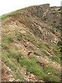 SX0281 : Cliff above Barrett's Zawn by Philip Halling