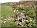 SX0281 : Stream above Barrett's Zawn by Philip Halling