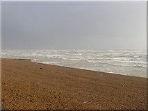 TQ2704 : Aldrington Beach by Simon Carey