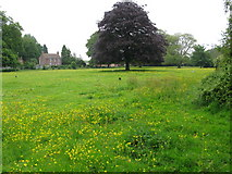 TR3256 : Meadow between footpath and Felderland Lane by Nick Smith
