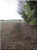 SU5393 : Ditch by the path by Bill Nicholls
