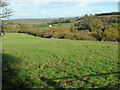 ST6368 : Stockwood Vale fields by James Ayres