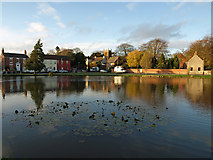 TA0816 : The Pond, Wootton by David Wright