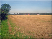 SK4862 : Arable land south of Norwood Lodge by Trevor Rickard