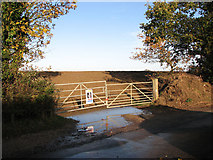 TG2103 : Former entrance into quarry site north of Mangreen by Evelyn Simak