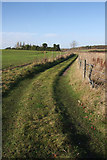 TL9568 : Footpath at Stowlangtoft by Bob Jones