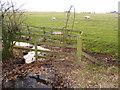 NZ0065 : Interesting Steel Stile at corner of Sheep Wash Wood by Clive Nicholson