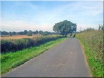 SK4765 : Ault Hucknall Lane - 1 by Trevor Rickard