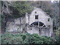 NZ2567 : Jesmond Dene - The Old Mill by Anthony Foster