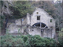 NZ2567 : Jesmond Dene - The Old Mill by Anthony Foster