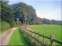 SK4664 : Driveway near The Grange by Trevor Rickard