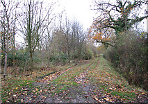 TM2384 : Unmarked track leading west from Church Hill by Evelyn Simak