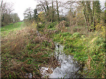 TM2384 : View west along the Beck by Evelyn Simak