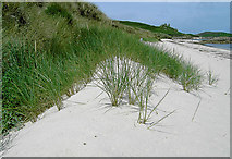 SV9216 : Embryo sand dunes, Great Par Beach, St Martin's, Scilly by John Rostron