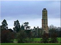 TQ6349 : Hadlow Tower in Kent by tristan forward