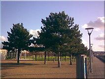 TQ4179 : Thames Barrier Park by Robert Lamb
