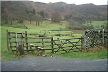 NY3404 : Start of footpath around Loughrigg Tarn by David Long
