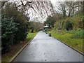 NZ2561 : Broad Walk, Saltwell Park by Andrew Curtis