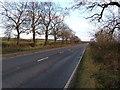 SE8840 : A1034 towards Hull by JThomas