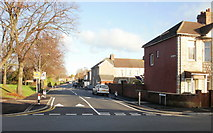 ST3186 : Marion Street, Newport by Jaggery