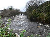 R1388 : River Cullenagh at Ennistymon by Eirian Evans
