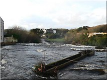 R1388 : View from the bridge over the River Cullenagh by Eirian Evans
