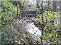 SE1407 : The River Ribble at Swan Bank, Cartworth (Holmfirth) by Humphrey Bolton