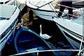N0441 : Athlone - Swan using River Shannon lock by Joseph Mischyshyn