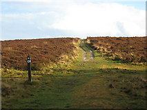 NZ5812 : Newton Moor: the path to Hutton Gate by Philip Barker