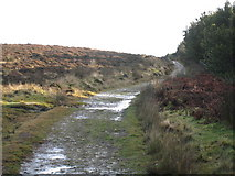 NZ5812 : Newton Moor: the path to Gribdale Gate by Philip Barker