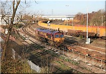 SU5290 : Didcot freight yard by roger geach