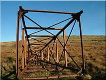 NY6931 : Fallen pylon, Silverband by David Brown