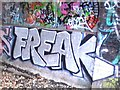 TQ3087 : Graffiti - Parkland Walk by Peter Neal