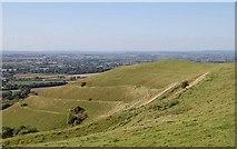 ST8412 : Hambledon Hill, Dorset by Clive Perrin