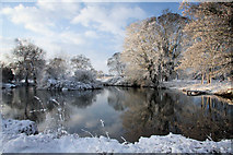 TL8063 : Pond at Little Saxham by Bob Jones