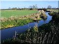 SP7813 : River Thame by Shaun Ferguson