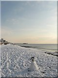 TQ2804 : Sad Snowman, Hove Beach by Simon Carey