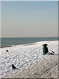 TQ2704 : Scavenging Crows, Hove Beach by Simon Carey