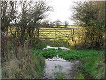 SP2504 : Waterlogged field gateway in Kencot by andrew auger