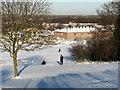 TL4855 : Netherhall School from Limekiln Hill, December 2009 by John Sutton