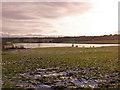 NS3966 : Houstonhead Dam by wfmillar