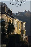SX9065 : Houses on Teignmouth Road, Torquay by Derek Harper