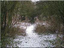 TA0623 : Wintry Track by David Wright