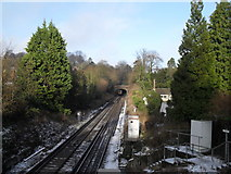 SU9948 : Looking northwards from Ferry Lane Bridge by Basher Eyre